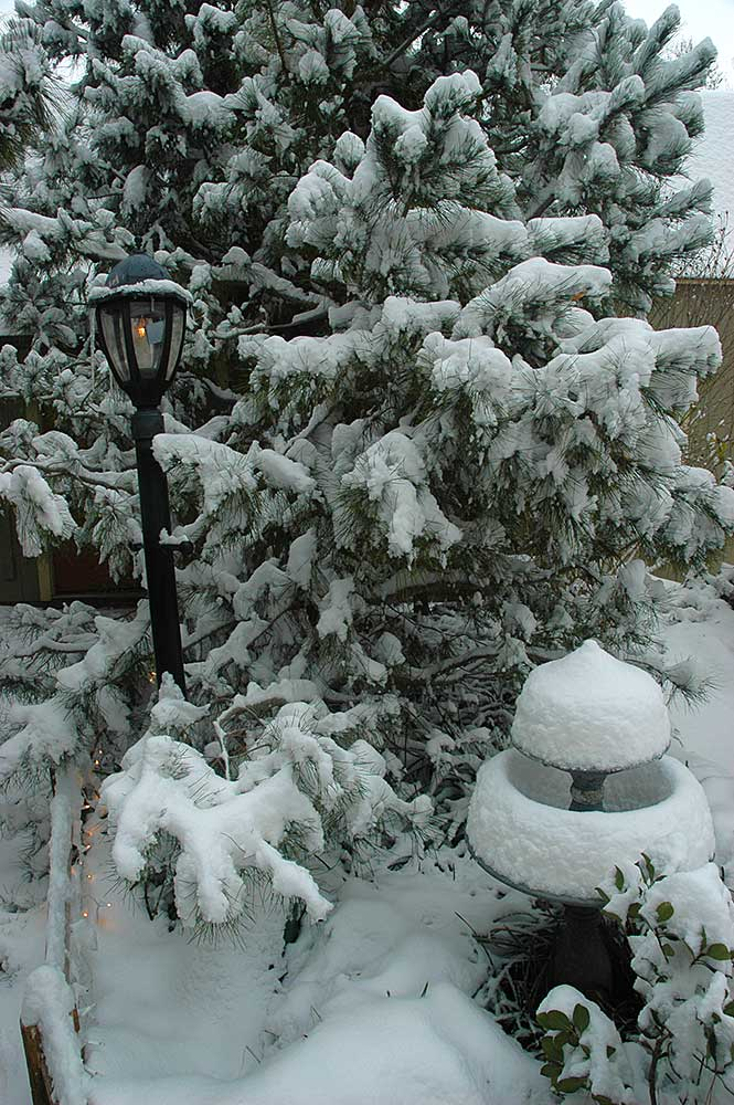 lamp post, lamppost, lampost in the snow