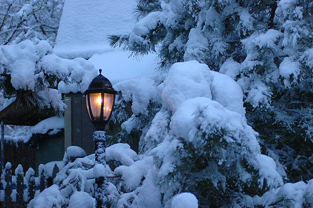 Narnian Lantern, Welcome home!, Home before dark, Narnian Lamp Post, Lantern, Lamp Post